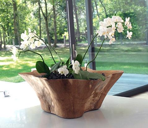 Doniczki I Donice Ogrodowe Plastikowe Gliniane Ceramiczne